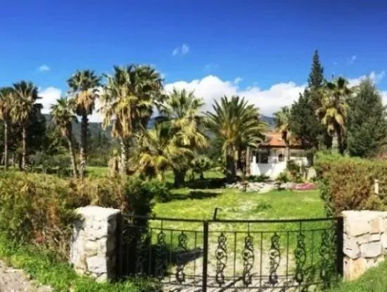 Mesudiye Datca Villa Am Meer, In Das Grundstück 4200M2