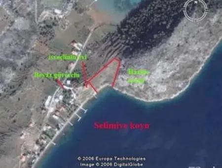 Selimiye Koyu İçinde Denize Sıfır 5500M2 Butik Otel Arsamız Satılıktır.
